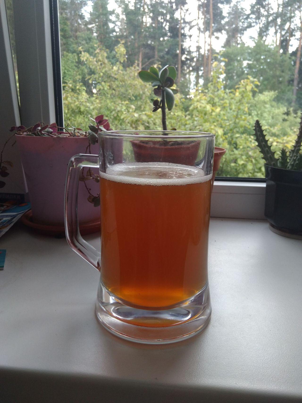 Как сделать пиво в дом условиях