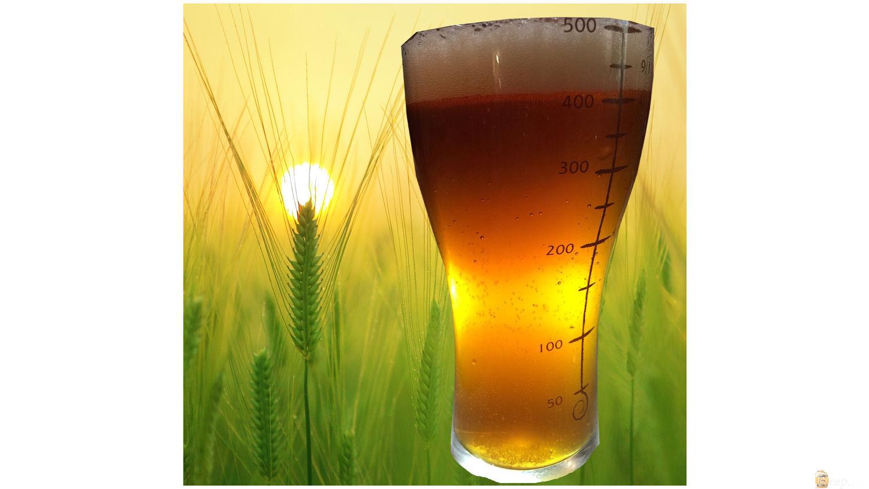 Хмелёфф - пиво в кегах, разливное пиво, живое пиво 44