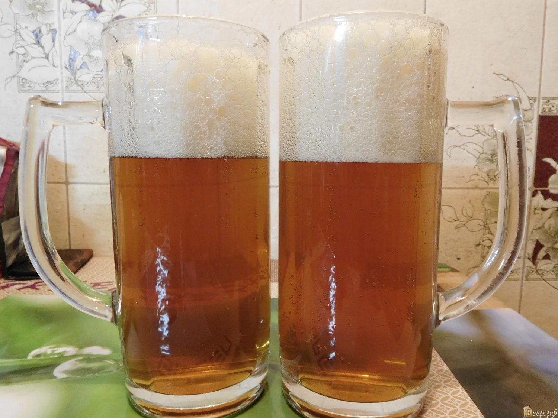 Хмелёфф - пиво в кегах, разливное пиво, живое пиво 82