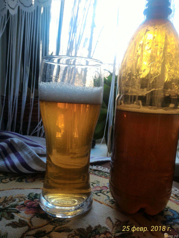 Как сварить пиво в домашних условиях - Едим Дома 8