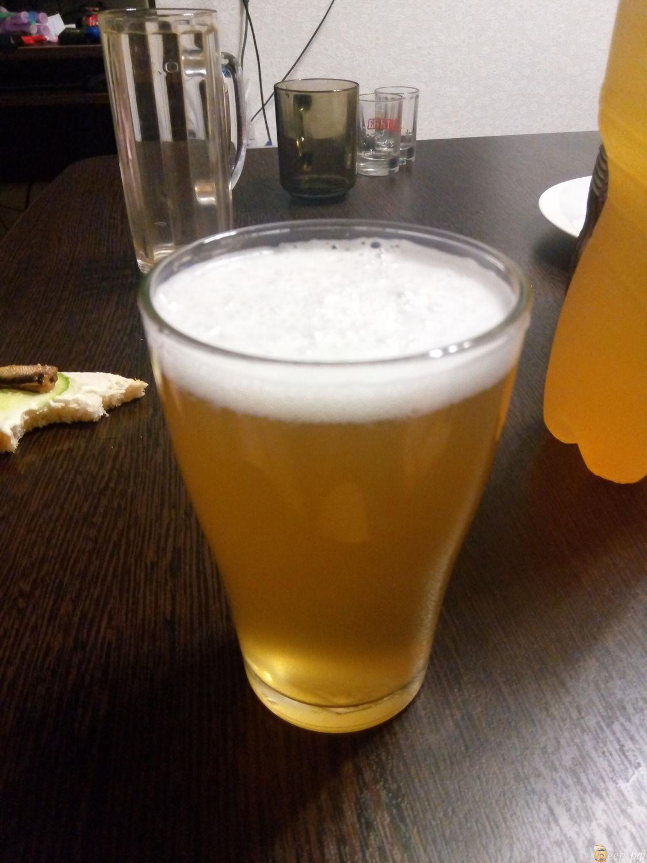Как сварить пиво в домашних условиях - Едим Дома 64