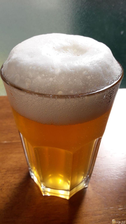 Как сварить пиво в домашних
